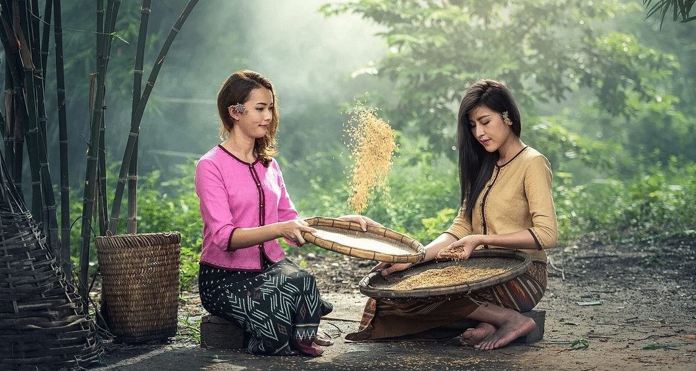 Quels plats expérimenter lors d'un circuit en Birmanie